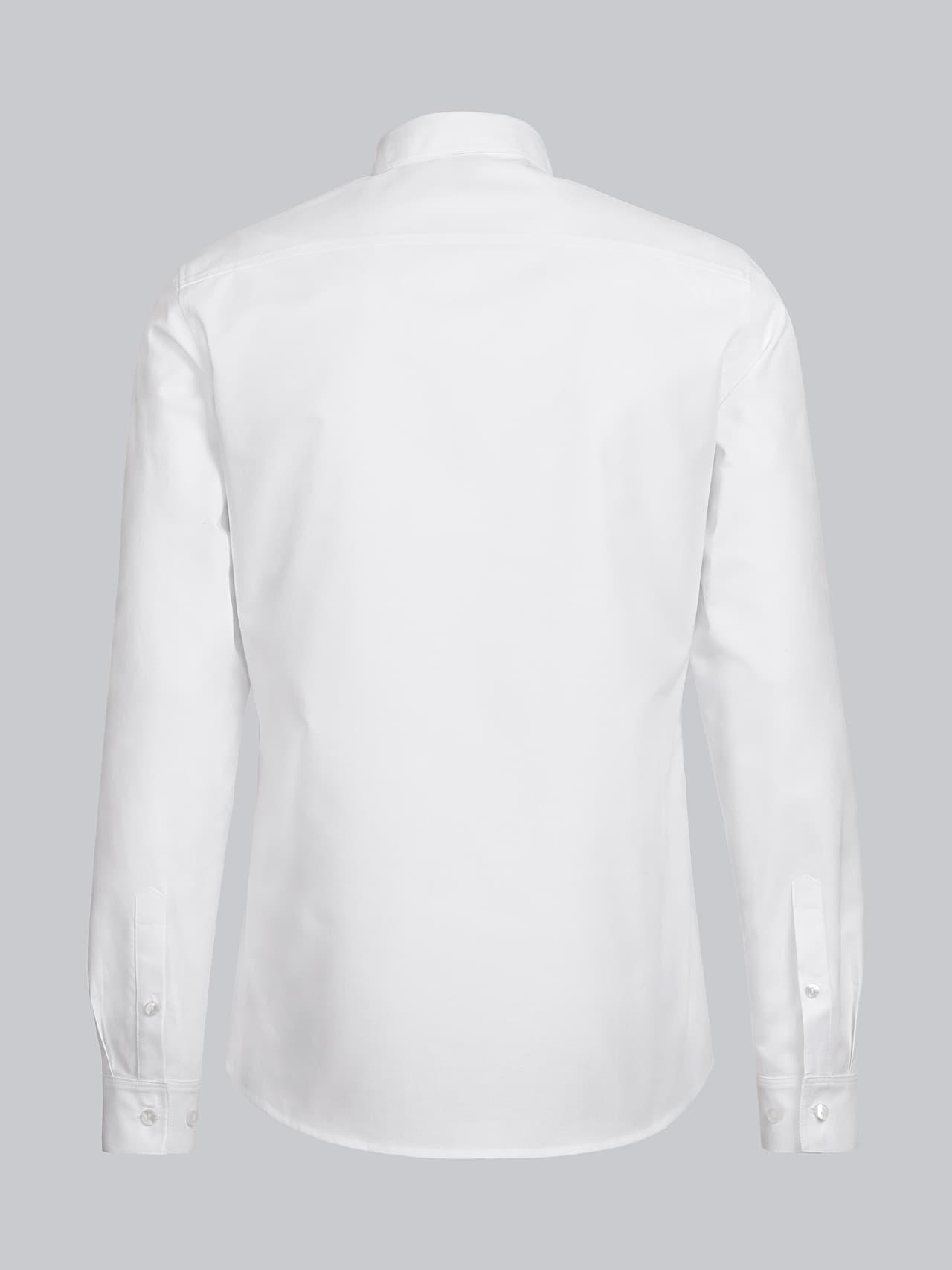 WOSKA V2.Y5.01 Kent Collar Oxford Shirt white Left Alpha Tauri