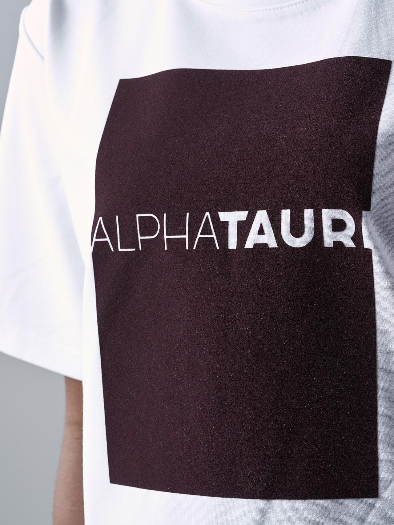 JASHU V1.Y5.02 Heavy-Weight Logo T-Shirt white Extra Alpha Tauri