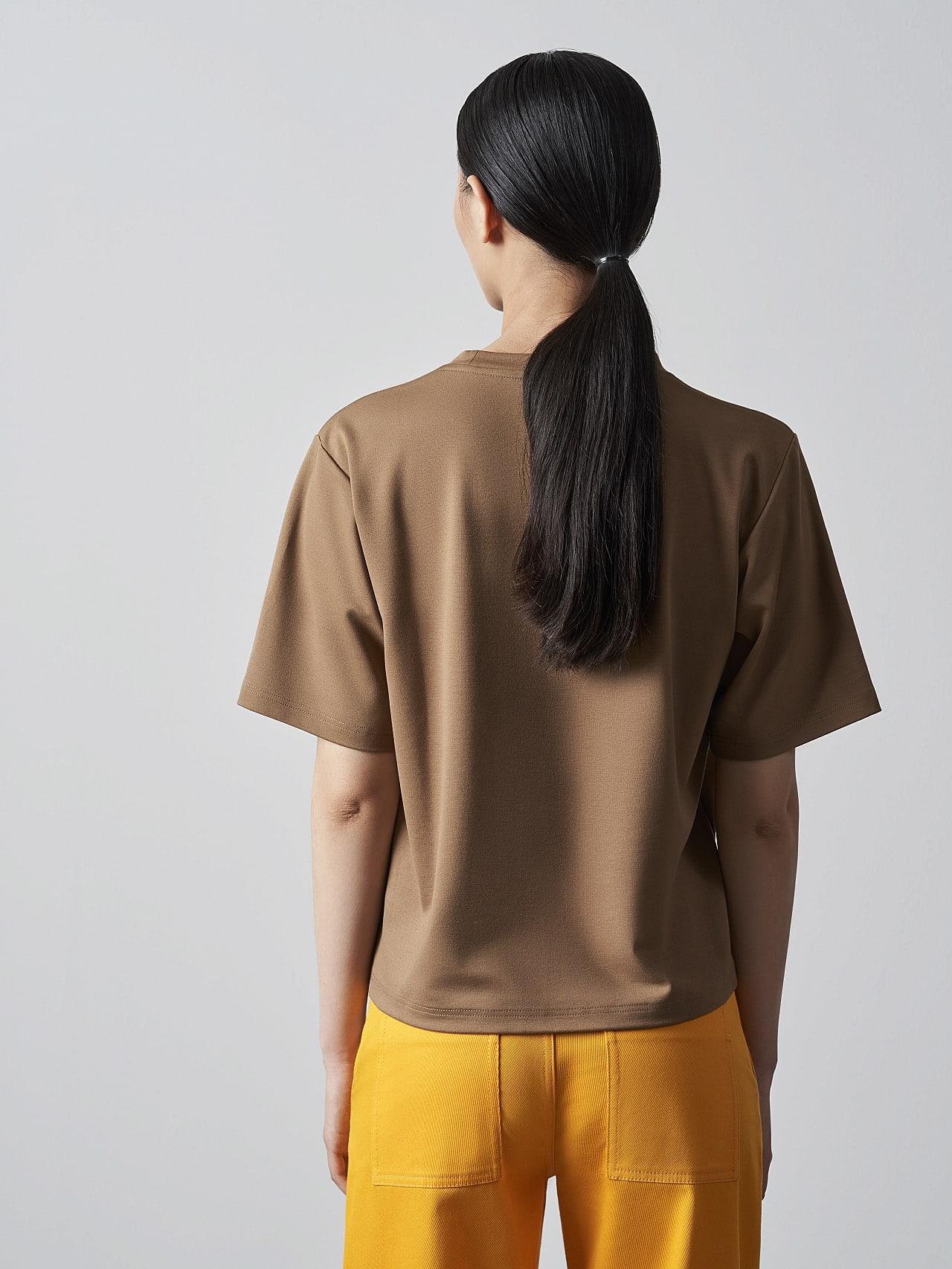 JASHU V1.Y5.02 Heavy-Weight Logo T-Shirt gold Front Main Alpha Tauri