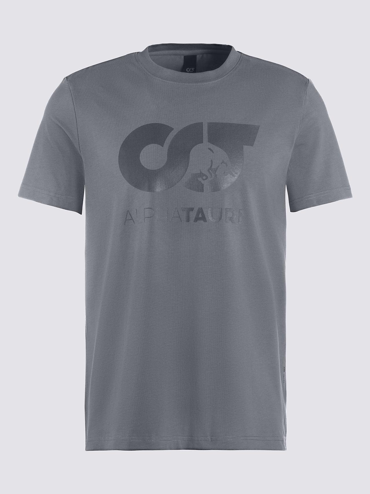 JERO V2.Y4.02 Signature Logo T-Shirt Grey Back Alpha Tauri