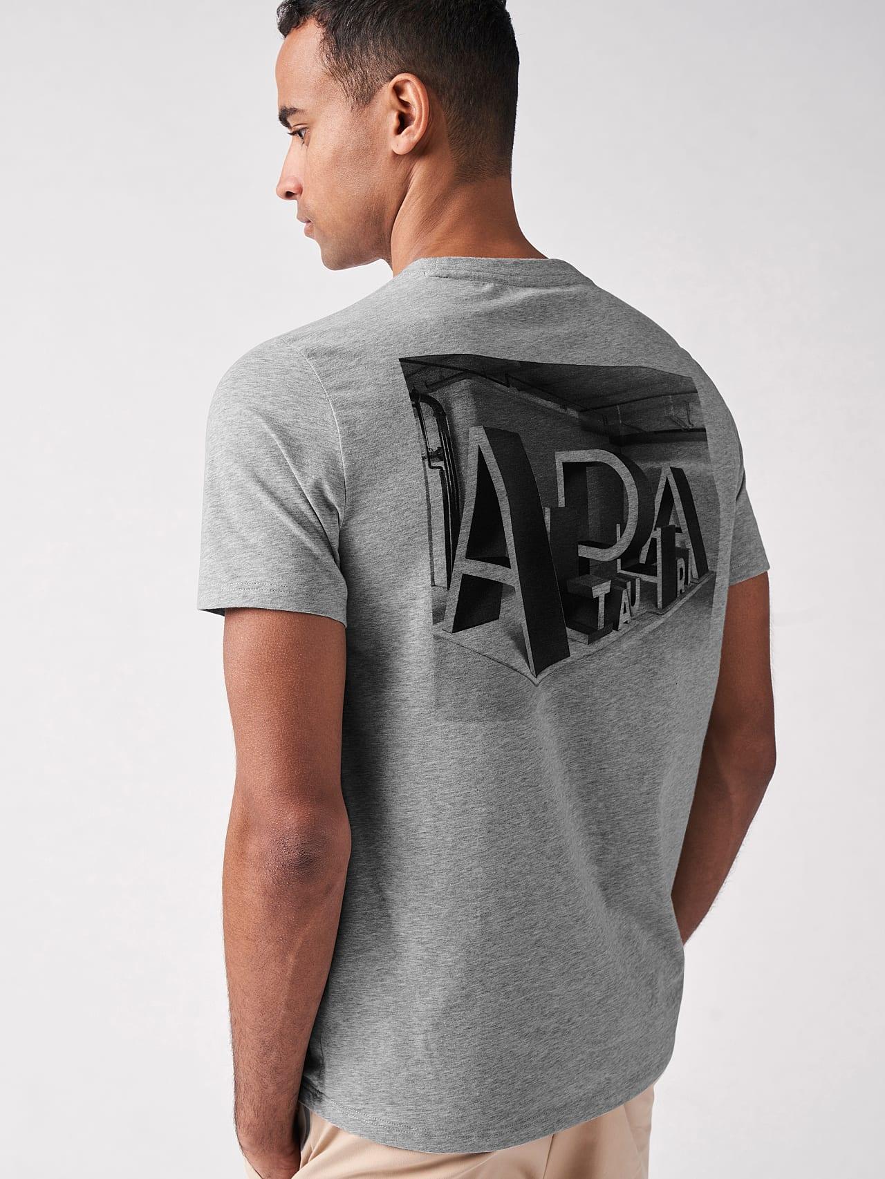 JALIP V1.Y5.01 Cotton Crew-Neck T-Shirt grey / melange Front Main Alpha Tauri
